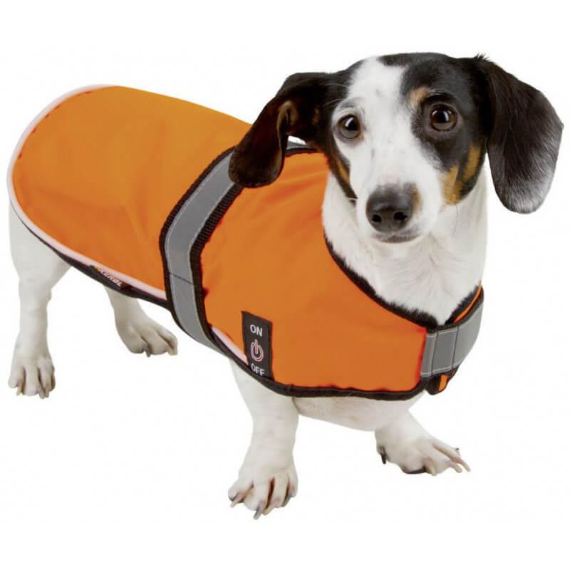manteau led pour chien maxi safe kerbl