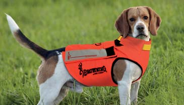 Gilet chien chasse